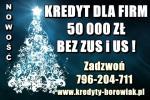 kredyt DLA FIRM – 50 000 ZŁ BEZ NIEZALEGANIA Z ZUS i US!
